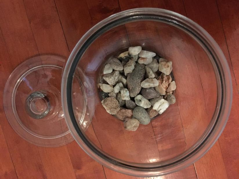 I used large stones for the first layer in the terrarium.