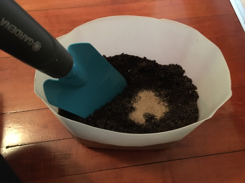 Two parts soil to one part sand to make a good terrarium mix.
