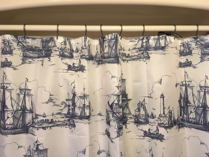 This fancy new shower curtain wouldn't stay this way for long with all the rust that was on the hooks.
